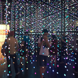 Immersive Art Around the World